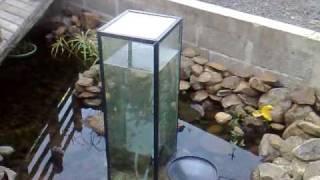 1st ever home made upside down aquarium feeder