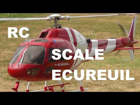 Scale Heli Ecureuil AS 355N