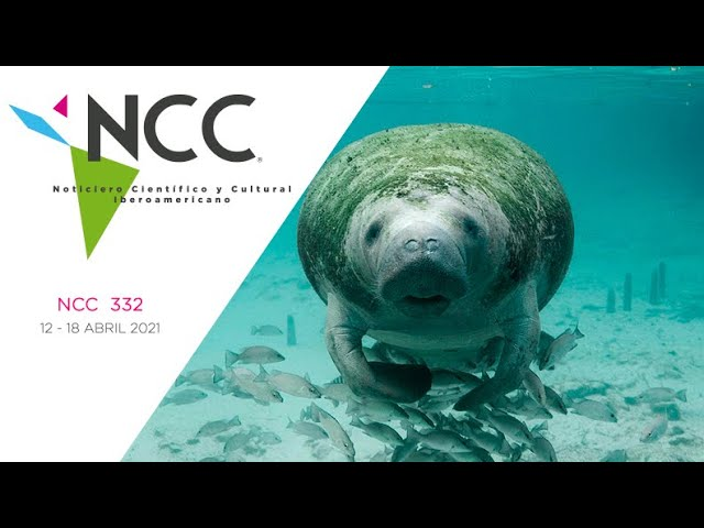 Noticiero Científico y Cultural Iberoamericano, emisión 332. 12 al 18 de abril del 2021