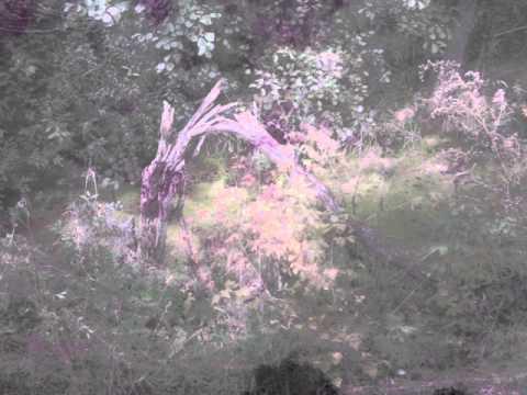 EugeneKha - Crystalis (Kawai K1m ambient)