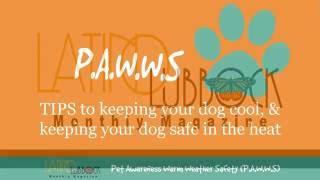 PAWWS Promo