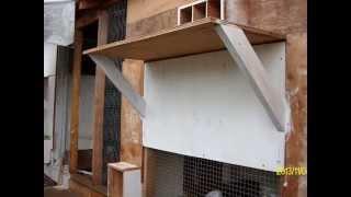 2014 Racing Pigeon Loft