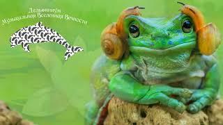 Соло лягушек 🐬  #ДельфиниумМузыкальнаяВселеннаяВечности