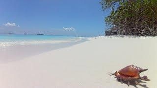 Обзор острова отеля Malahini Kuda Bandos Maldives за 12 минут