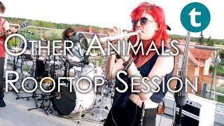 Thomann Sessions | Other Animals, Australia