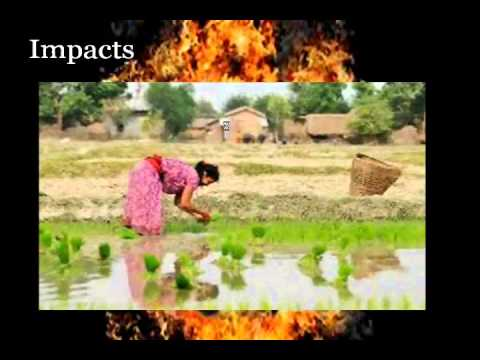 global warming causes , effects and solutions - YouTube