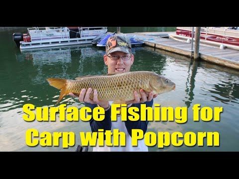 Surface Fishing For Carp With Popcorn At Smith Mountain Lake