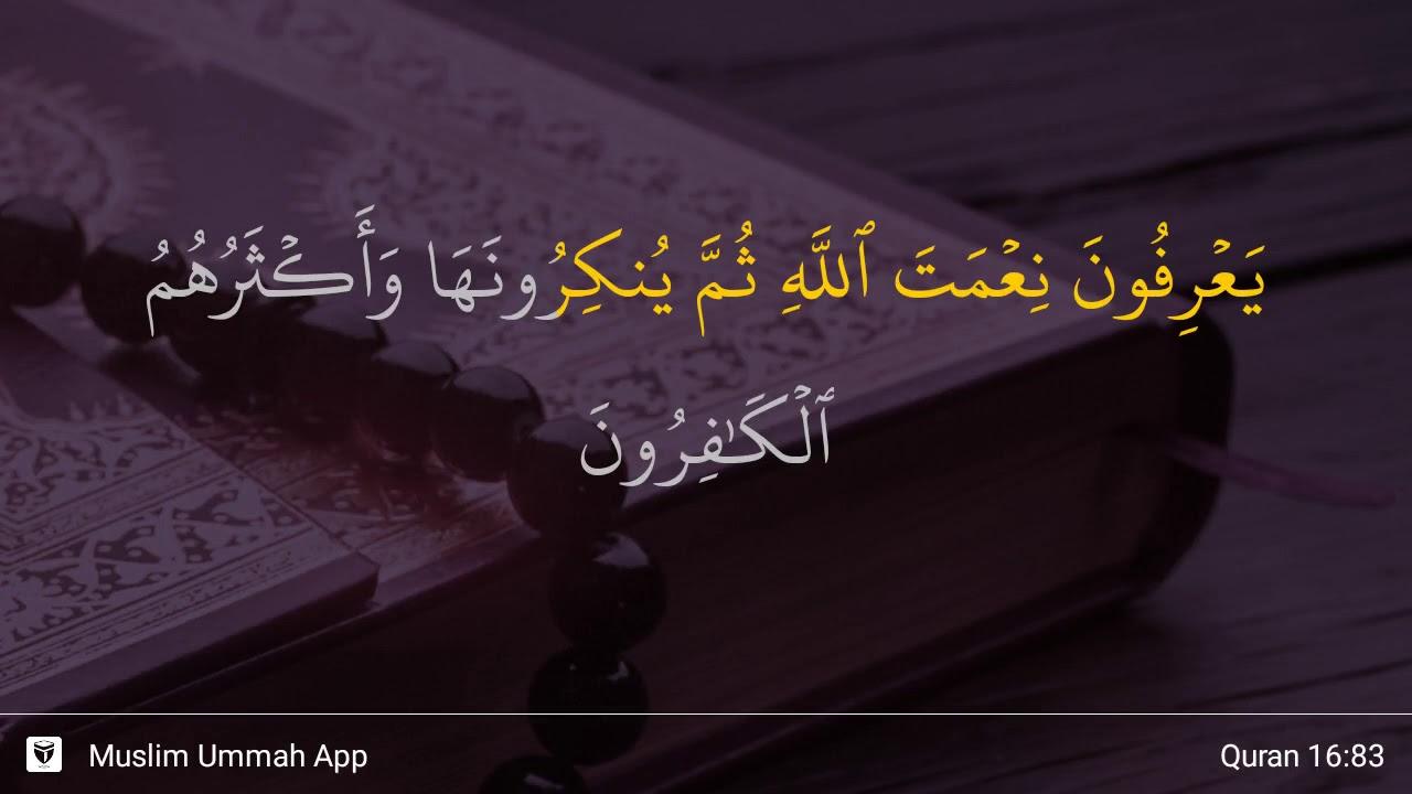 Surah An Nahl Ayat 83 Qs 16 83 Tafsir Alquran Surah Nomor 16 Ayat 83