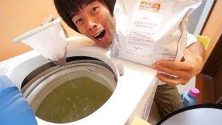 ワカメ採取!洗濯機の掃除に過炭酸ナトリウム最強すぎ!