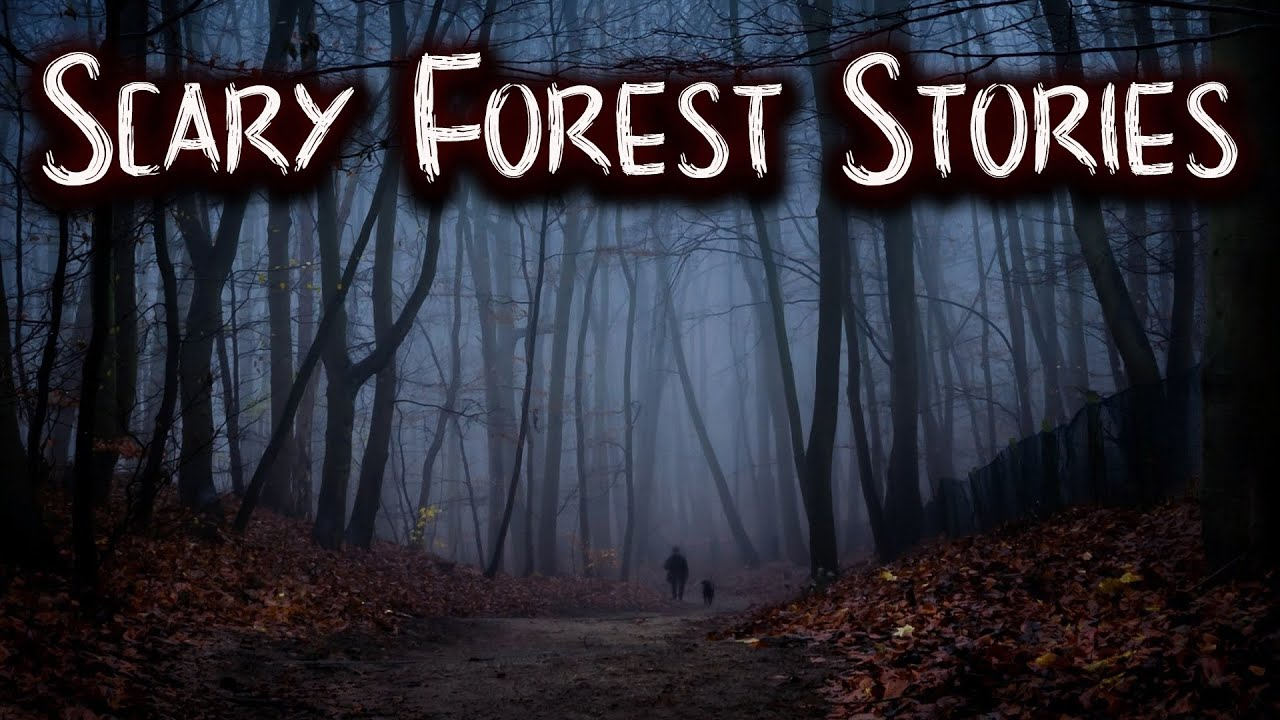 Scary Forest Stories | Skinwalker, Park Ranger, Deep Woods