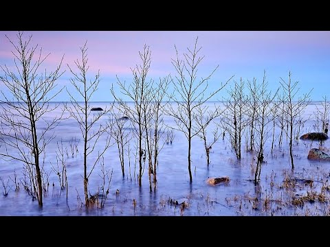 Erkki-Sven Tüür Piano Sonata (III) - Hando Nahkur