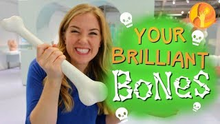 Your Brilliant Bones! | Maddie Moate