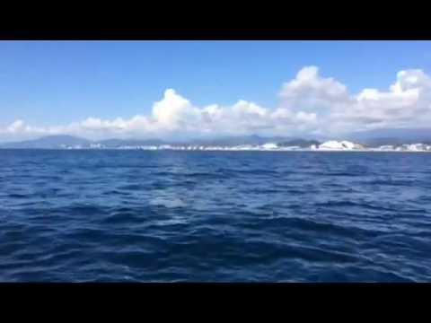 Черное море, вид на Сочи The black sea Sochi. VIA
