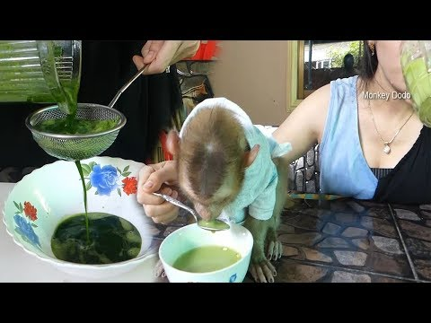 Wow Awesome Mama Make Mung Bean Pandan Milk For Dodo, Dodo And Mom Drink Together
