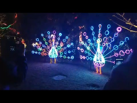 Music Christmas Lights 2018 & Carnival Rides In New Orleans City Park  Clark Griswold would be PROUD