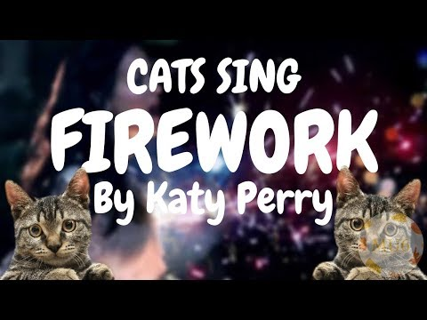 Cats Sing Firework by Katy Perry | Cats Singing Song