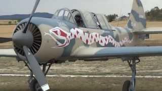 Aerobatic Yakovlev Yak-52 (EC-IAO) - Aerosport 2014