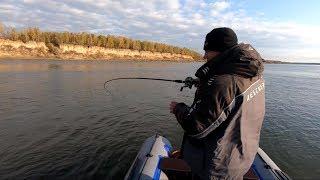 За этими МОНСТРАМИ я охотился весь год Тестируем набор приманок Осенняя щука Рыбалка на спиннинг