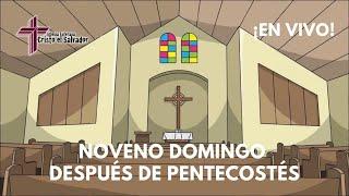 Noveno Domingo Después de Pentecostés, Cristo El Salvador LCMS Del Rio, TX