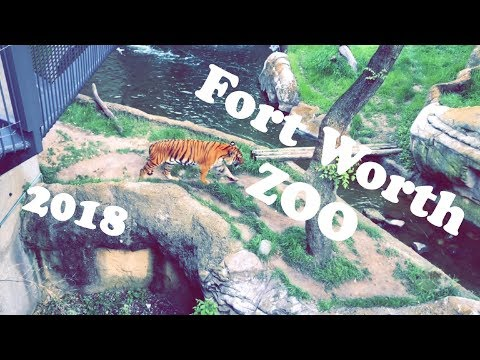 Fort Worth ZOO 2018 | R HOUSE TRAVEL VLOG