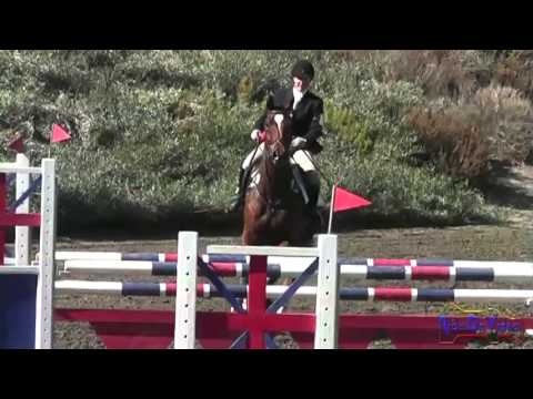 044S Allison Sparks CCI 1* Stadium Jumping Galway Intl 3-Day Nov 2012