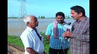 Tammileru Flood : Farmers Facing Huge Loss Due To Floods | Studio N