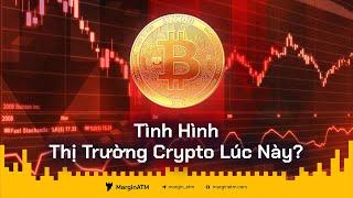 Tình Hình Thị Trường Crypto Lúc Này Như Thế Nào?