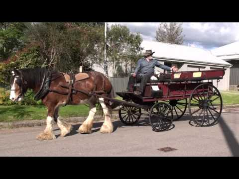 Juliet's Horse Wagon Is Topless In Morpeth -Newcastle