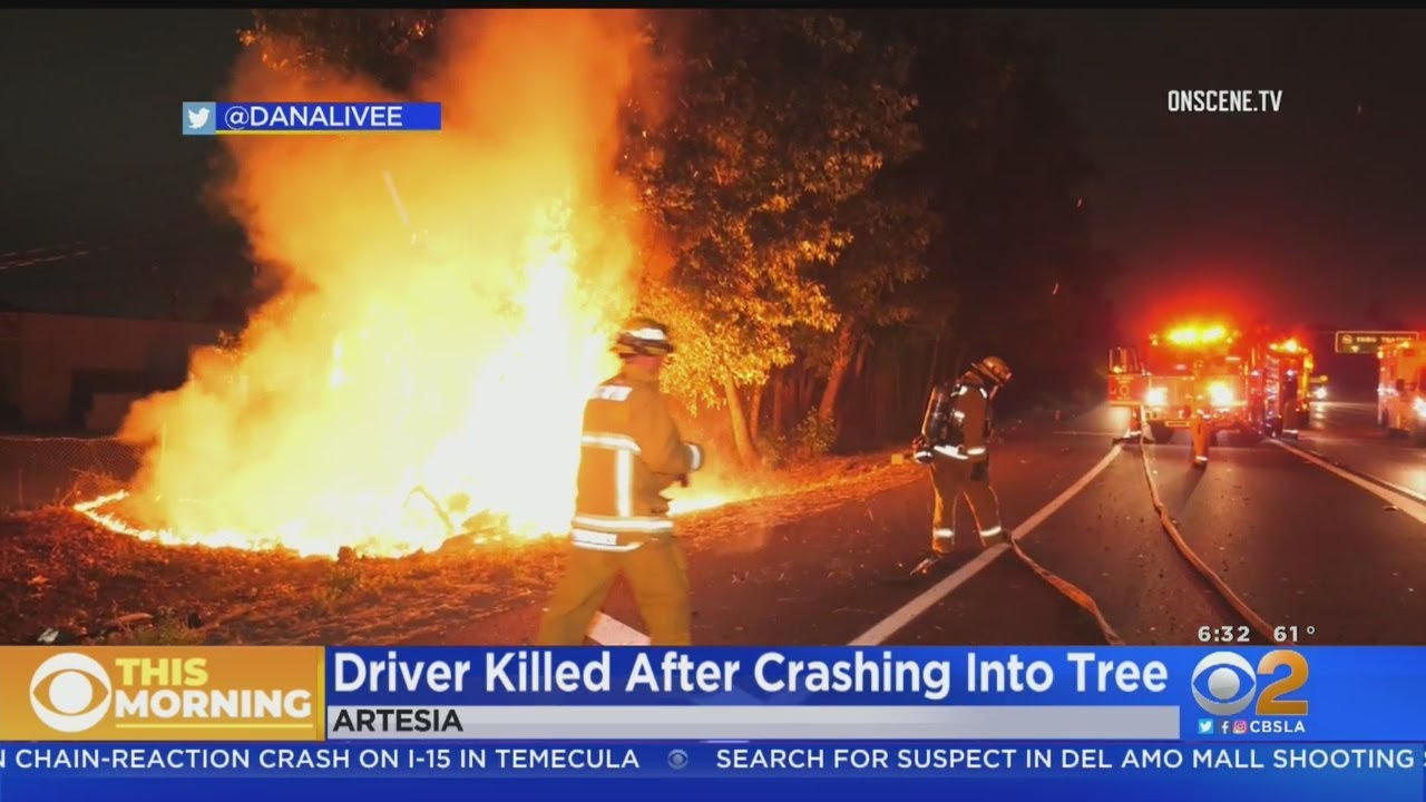 Driver Killed After Car Slams Into Tree, Catches Fire Off 91 Freeway In  Artesia