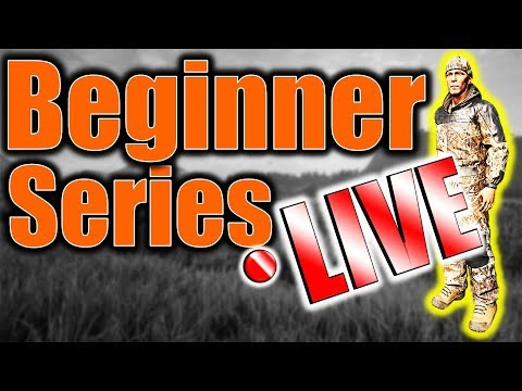 Beginner Series LIVE Q&A + Search for Diamond Fox