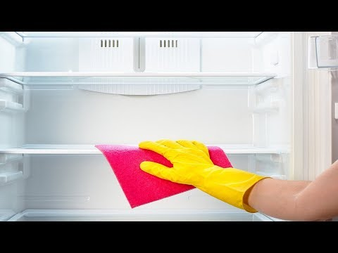 How to Keep Your Fridge Clean and Organized