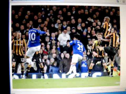 Stuart Hall match report Everton v Hull City 10/01/09