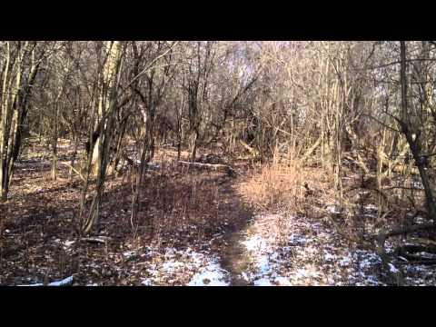 Abandoned Goeselville IL (near Oak Forest IL)