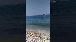 """Segnalazione di ancoraggio ravvicinato, zona """"Torretta"""""""