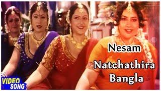 Deva Super Hit Songs | Natchathira Bangla Song | நேசம் | Ajith Kumar | Maheswari | Music Master