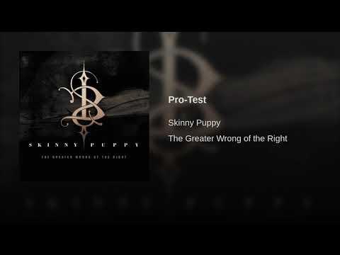 Pro-Test