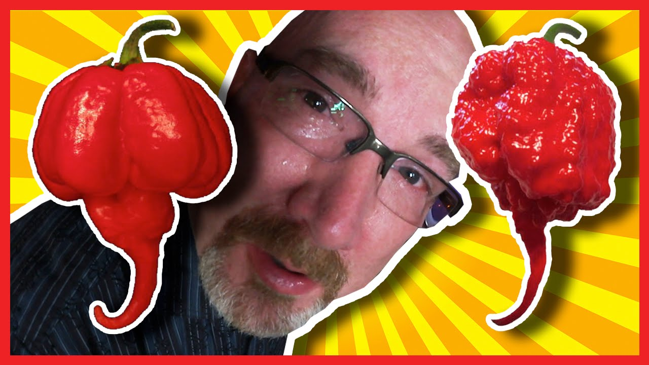 Carolina Reaper & Scorpion Pepper Challenge a 200,000th Subscriber Celebration