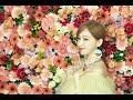 Miniature de la vidéo de la chanson 教海鸥飞行的猫