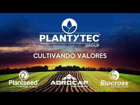 Grupo Plantytec 20 anos. Linha do Tempo