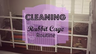 How I Clean Rabbit Cage Routine 2015