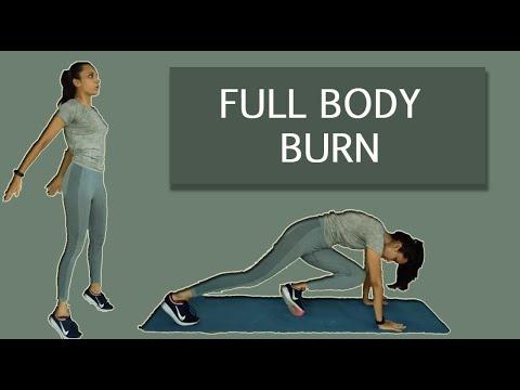 no jumping hiit workout  full body burn  cardio workout
