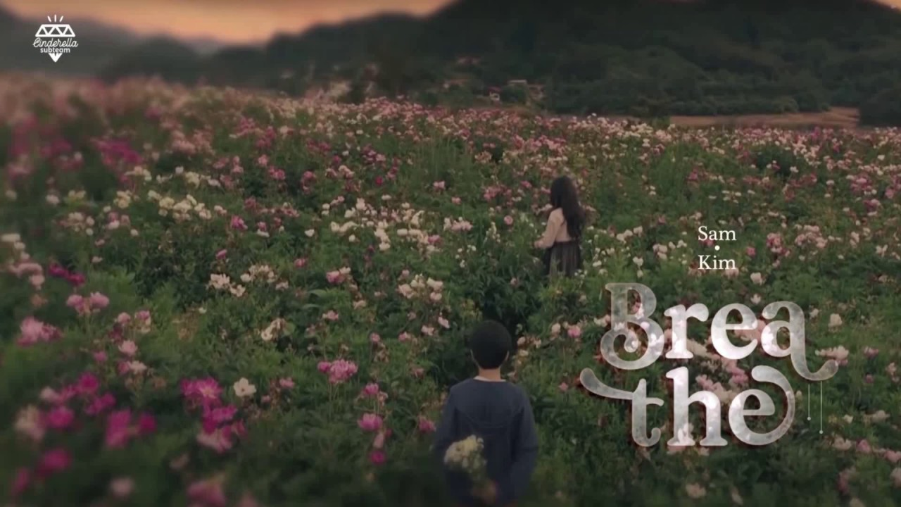 [Vietsub] Breathe - Sam Kim (It's Okay To Not Be Okay OST Part 2)