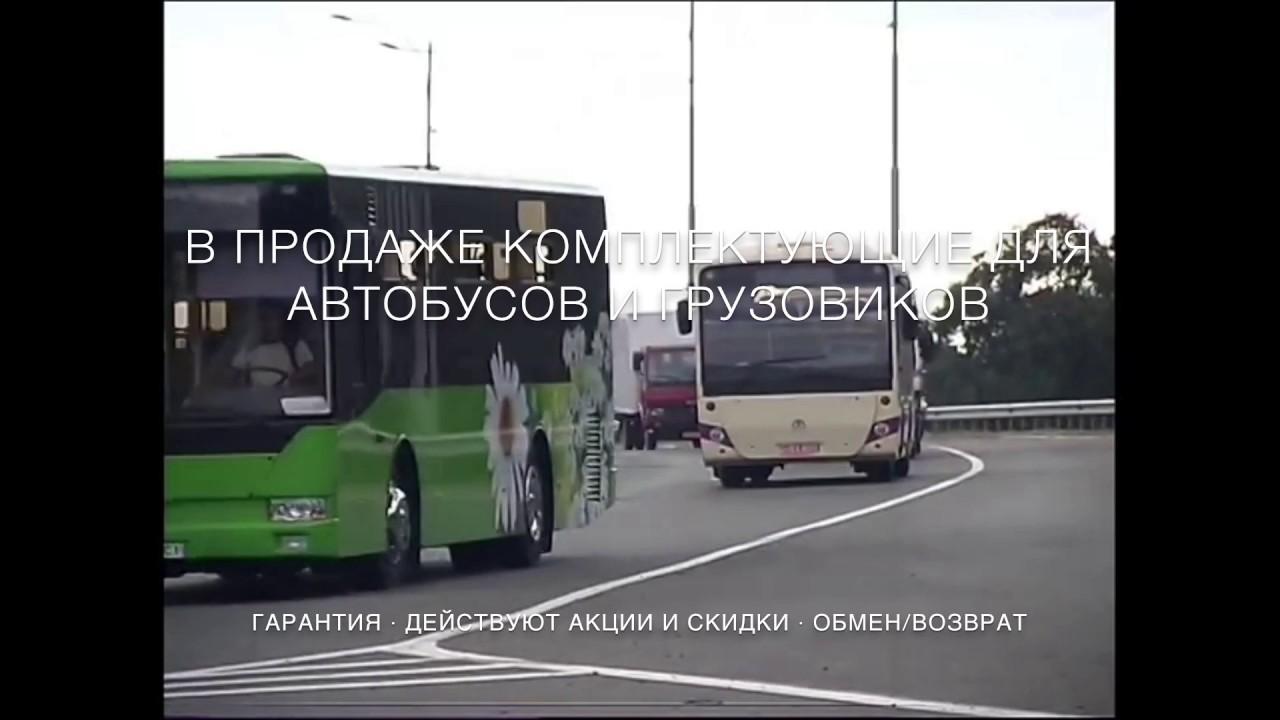 Кличко сел за руль автобуса и обещал прокатить на нем Шварцнегера .