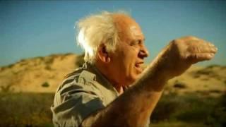 לירן טל - ישראלי  (הקליפ הרשמי) Liran Tal - Israeli
