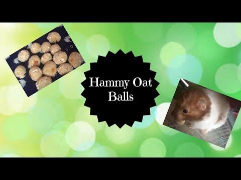 ♥ Hammy Oat Balls | Diy ♥