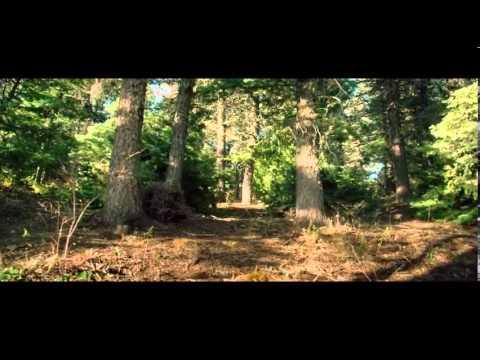 Download Devil's Knot (2014) - HD Trailer #1