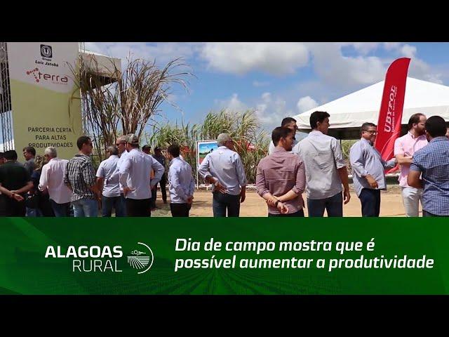 Dia de campo mostra que é possível aumentar a produtividade dos canaviais em Alagoas