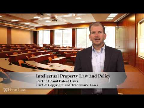 Intellectual Property Law and Policy with Professor Polk Wagner