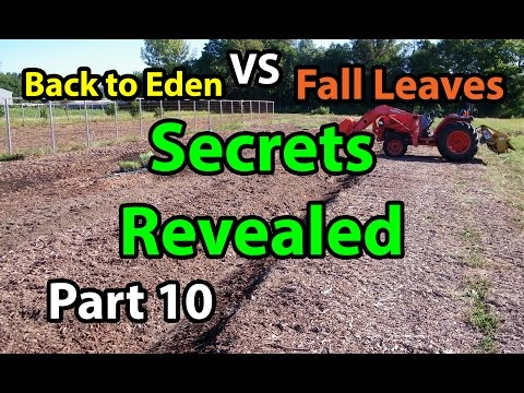 Back to Eden Organic Gardening 101 Method with Wood Chips – Leaves Composting G. Series # 10