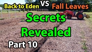 Back to Eden Organic Gardening Secrets 101 Method with Wood Chips - Leaves Composting G. Series # 10